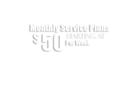 Monthly Service Plans - Safeway Sanitizing image